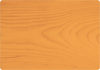 Oregonská Pinie 0065