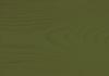 Zeleň Jedlová 0051
